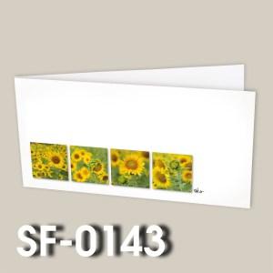 SF-0143