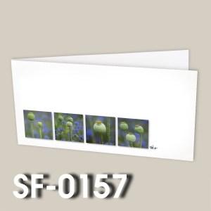 SF-0157