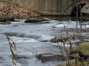 Löcknitzwasser