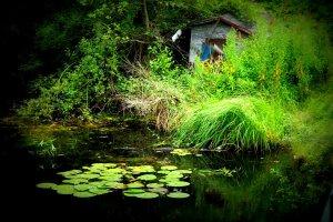 Uferhütte