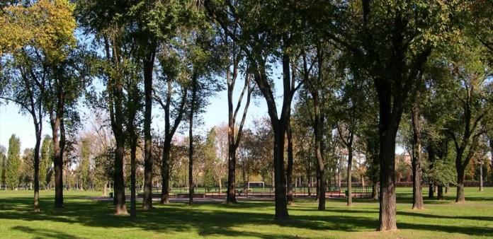 Il Parco di Trenno Milano