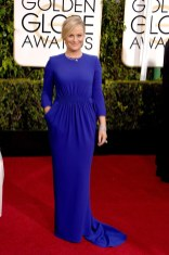 Amy Poehler attends the 72nd annual Golden Globe Awards