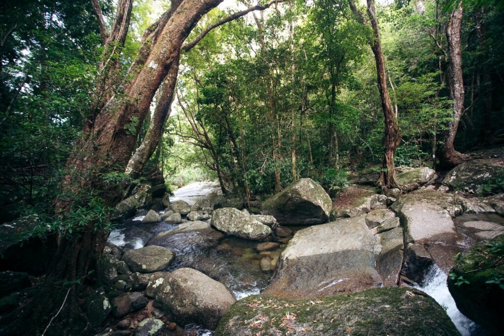 Continue to devil's thumb pass. Devils Thumb Hike Manjal Jimalji Mossman Hiking Guide We Seek Travel Blog