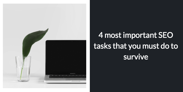4 most important SEO tasks that you must do to survive
