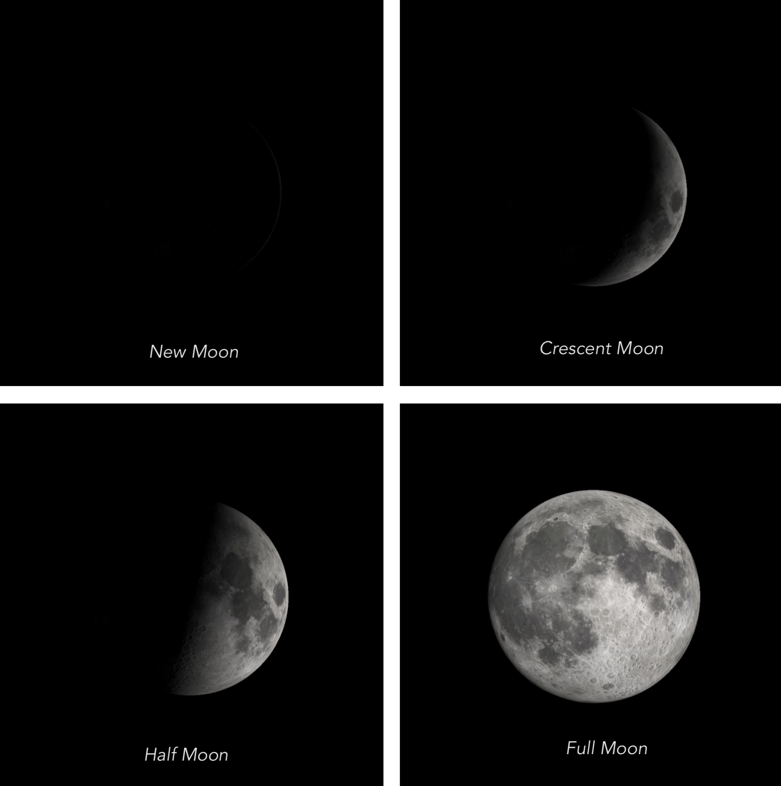 Science Activity Moon Phases We Share The Same Moon