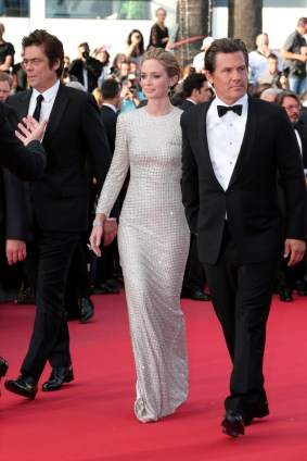 PHOTOS: 'Sicario' Cast Premieres Film at Cannes 2015