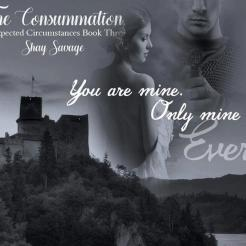 SPOTLIGHT: 'Unexpected Circumstances: The Consummation' by Shay Savage