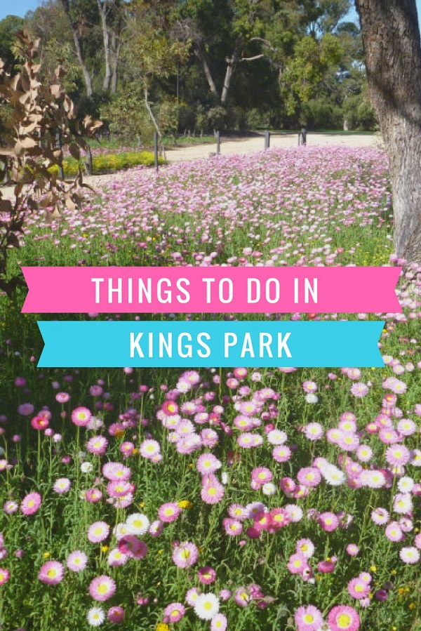 Things to do in Kings Park