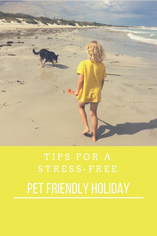 Tips for a stress free pet friendly holiday