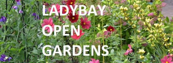 Lady Bay Open Gardens