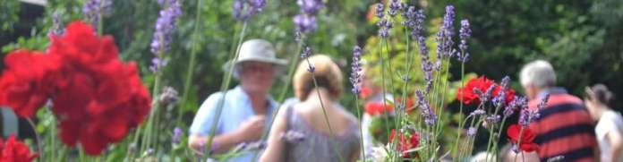 Lady Bay Open Gardens 2017