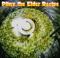 West Coast Brewer Pliny the Elder Homebrewing Recipe