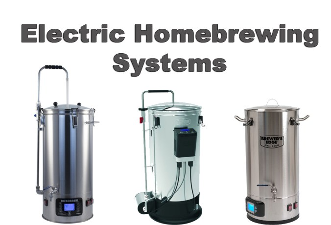 Electric Home Beer Brewing Systems