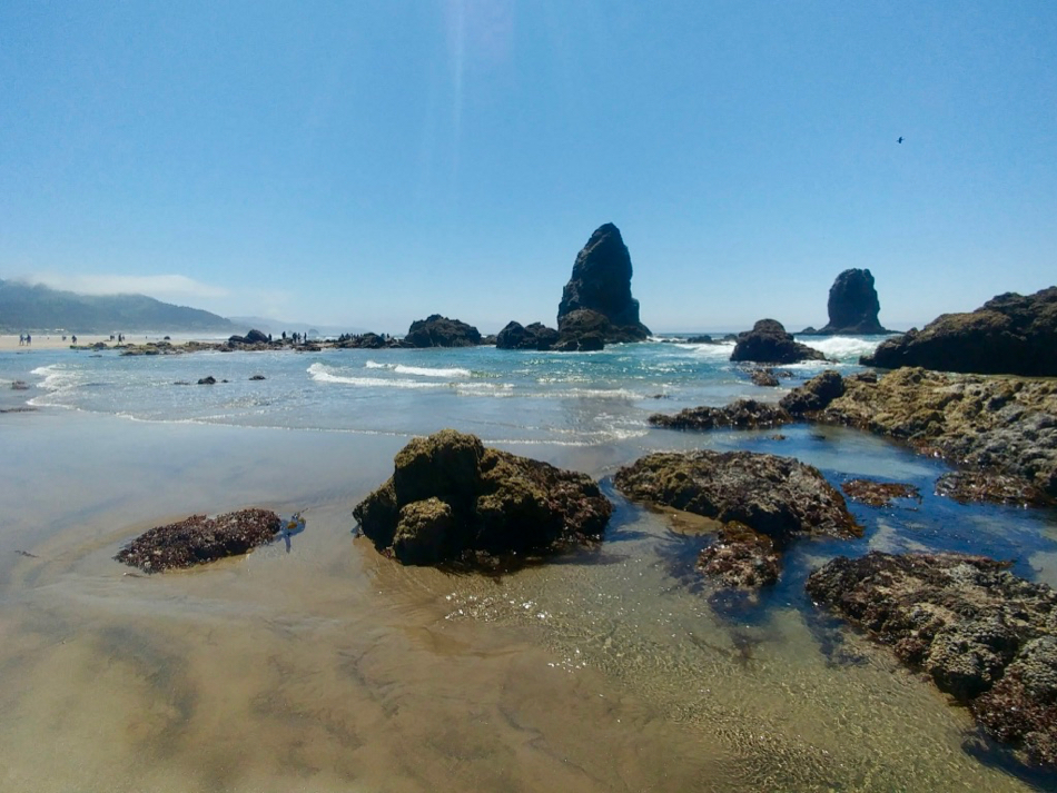 Rocks and tide pools on Cannon Beach