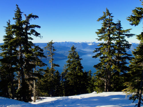 Winter Magic: 3 easy snowshoe trips near Vancouver