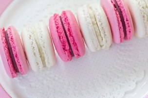 Row of cocos and blackberry macarons