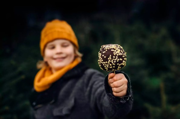Little boy standing in front of fir trees holding chocolate dipped apple
