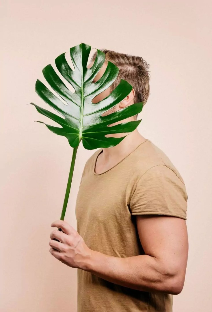 Close-up of man holding leaf over pastel background.