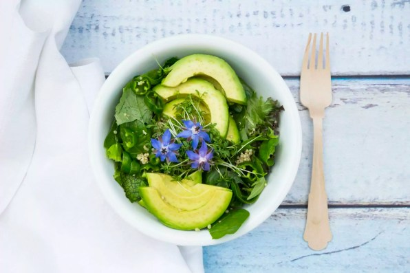 Detox Bowl of different lettuces, vegetables, cress, quinoa, avocado and starflowers