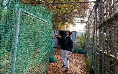 Der Outdoor Batting Cage ist im Winterschlaf + Sportausschusssitzung in Holm