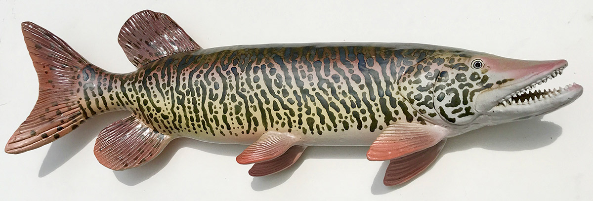 """Alan and Rosemary Bennett """"Tiger Muskie"""" 10x32 clay $850."""