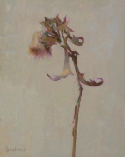"Thomas S. Buechner ""Dried Thistle"" 10x8 unframed oil $1,870."