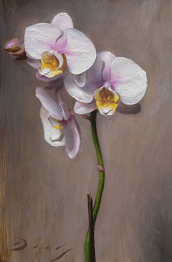 "Joseph Q. Daily ""Pink Orchid - Oct 2017"" 9x6 oil $850."