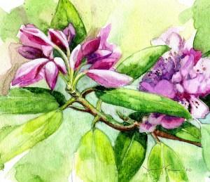 "Jennifer Fais ""Pretty in Pink "" 5x6 watercolor/acrylic $225."