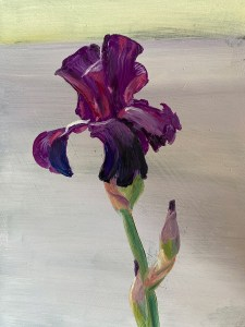 "Tom Gardner ""Purple Iris"" 7x5 oil $275."