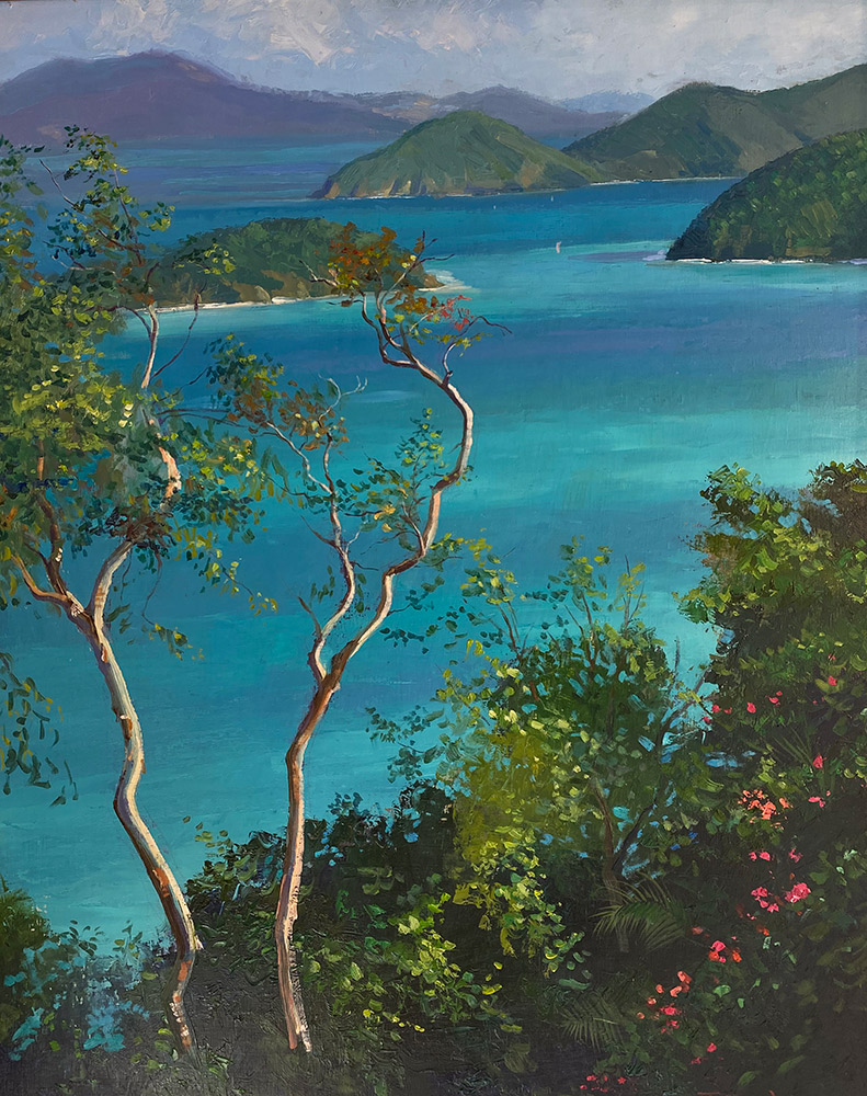 "Tom Gardner ""View from Chesney's Place"" 30x24 oil $2,200."