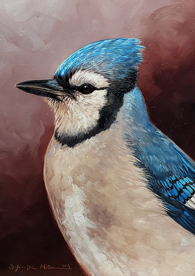 "Jennifer Miller ""Blue Jay"" oil painting SOLD"