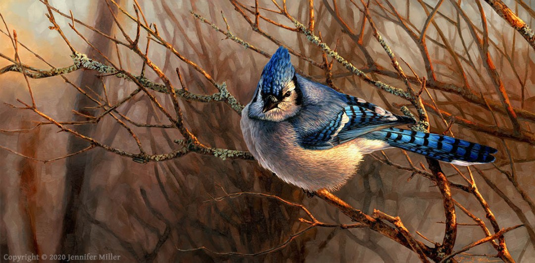 "Jennifer Miller ""Fading Light"" (Blue Jay) 12x24 oil $3,200."