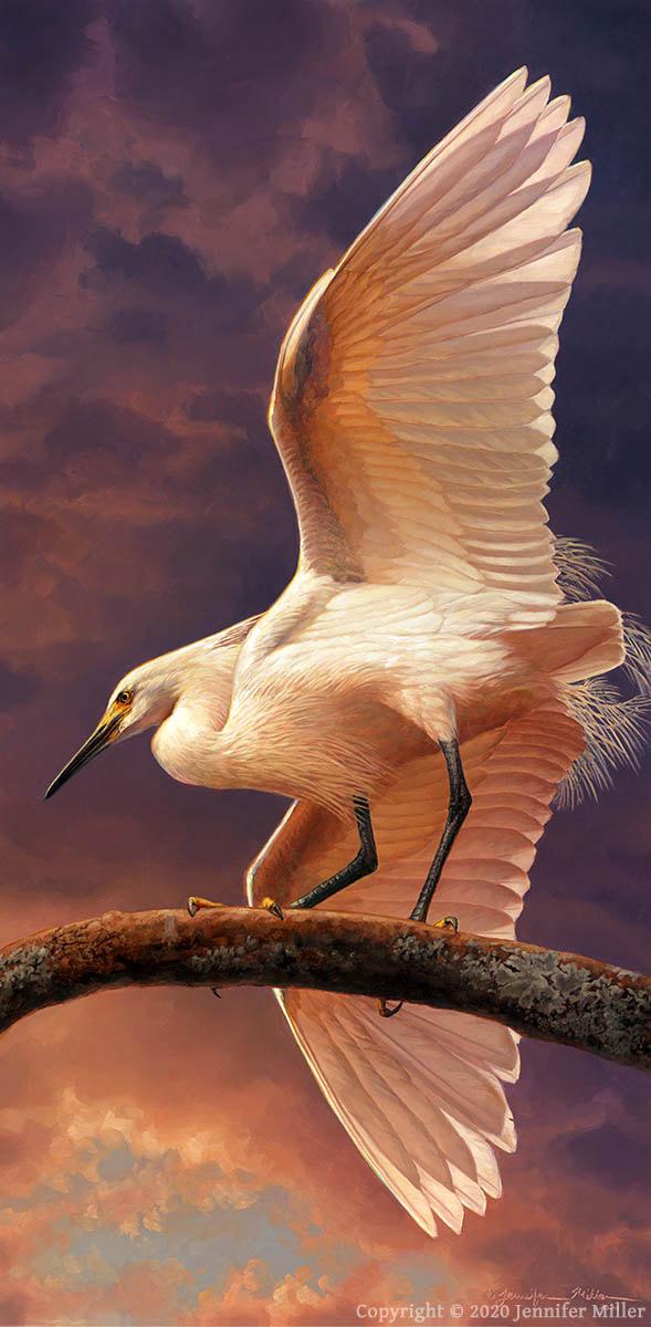 """Jennifer Miller """"Instability"""" (Snowy Egret) 24x12 oil $3,200. SOLD"""