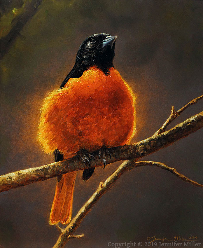 "Jennifer Miller ""Lightbulb - Baltimore Oriole"" 10x8 oil $850."