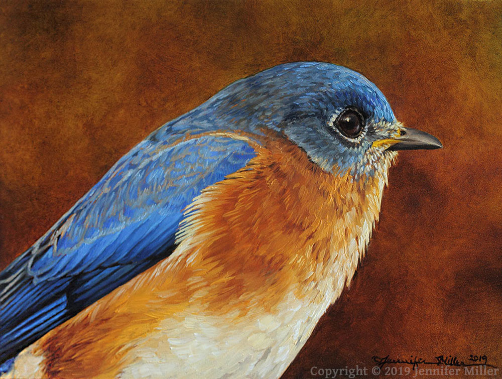 "Jennifer Miller ""Looking Forward - Eastern Bluebird"" 5x7 oil $375. SOLD"
