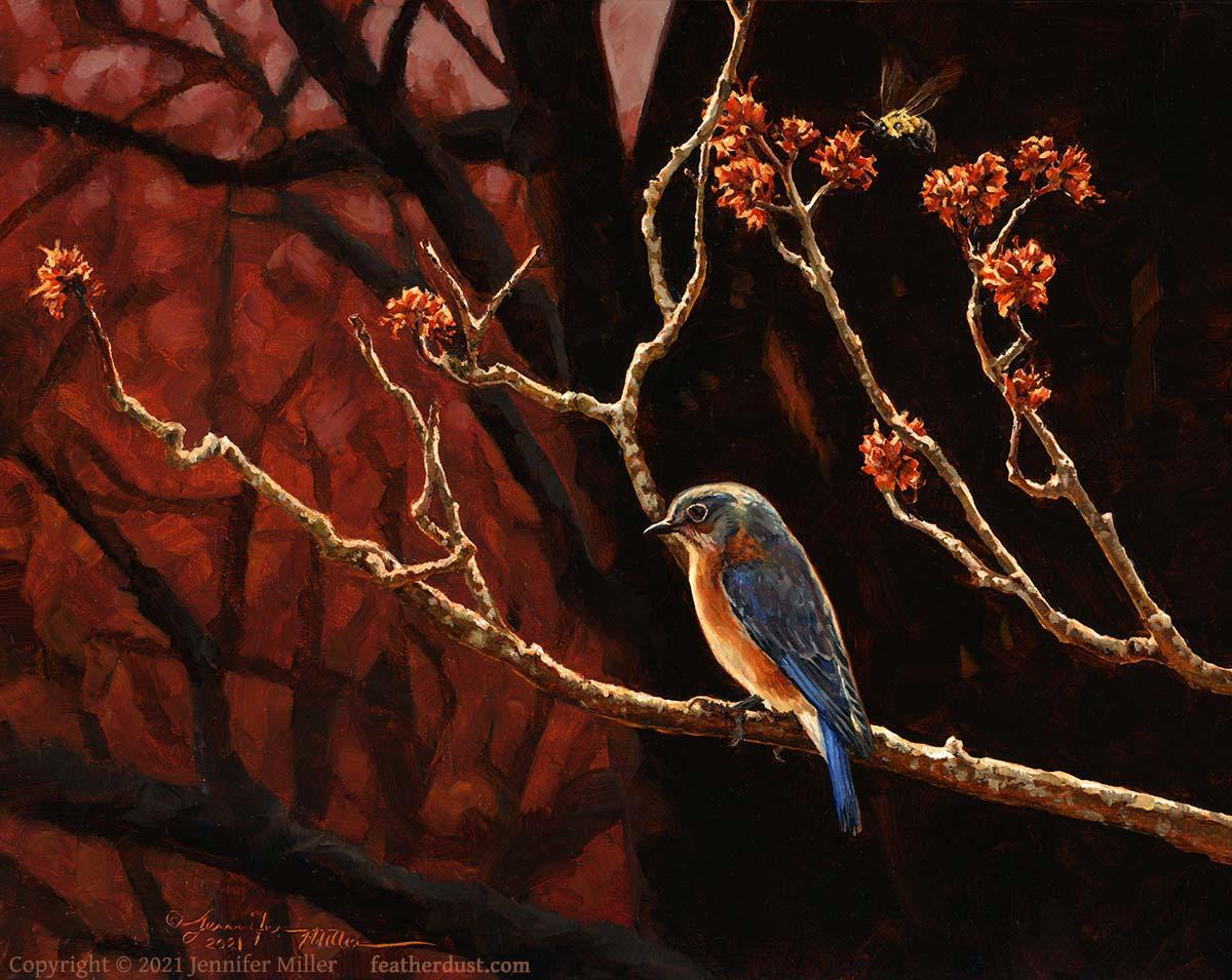MillerMapleMothersEasternBluebird - 2021 Spotlight: Jennifer Miller