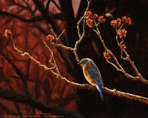 MillerMapleMothersEasternBluebird - MillerMapleMothersEasternBluebird