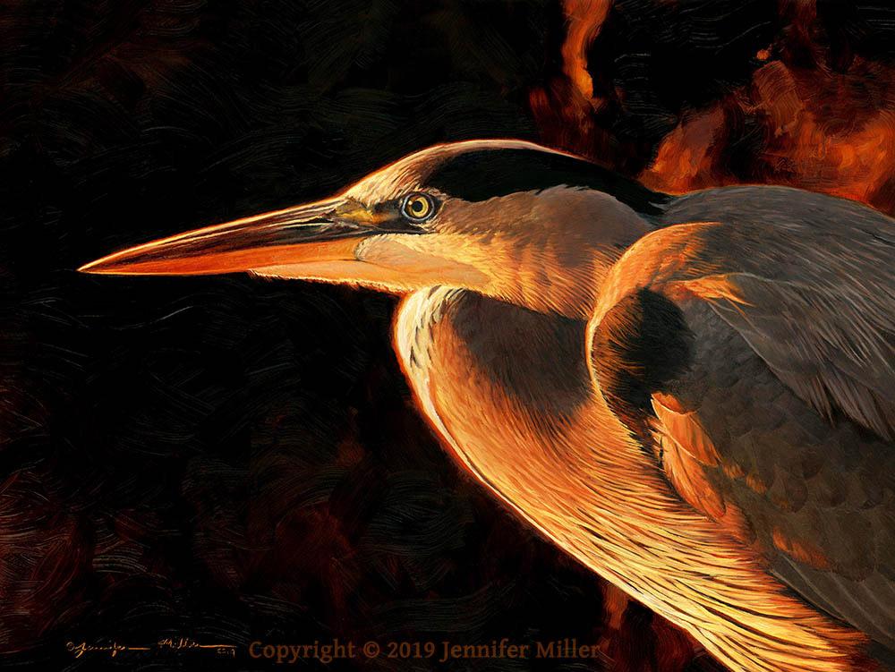 "Jennifer Miller ""Sharp Intensity"" (Great Blue Heron) 12x16 oil $1,950. SOLD"