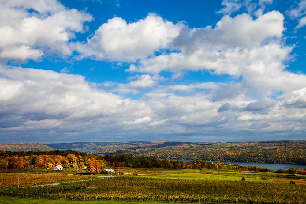 "Chris Walters ""Keuka Lake Fall"" inquire for available ordering options"