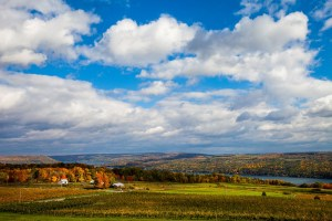 "Chris Walters ""Keuka Lake"" Photograph"