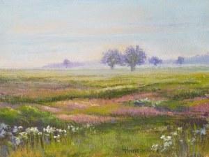 Hansee Early Morning Motezuma WLR painting