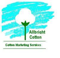 Allbright Cotton