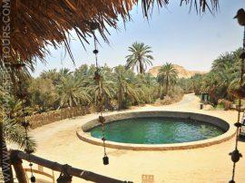 Cleopatra's Pool in Siwa Oasis
