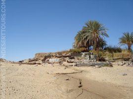 Magic Spring in the Western Desert