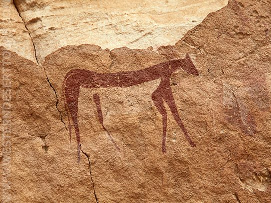 Painting of an animal in the Cave of Swimmers