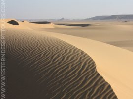Sand dunes in the Abu Muharrik dune fields in Egypt's Western Desert
