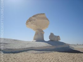 The iconic Chicken and Mushroom rock formation in the White Desert National Park