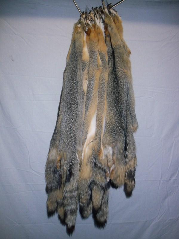 Western Grey Fox - Tanned Fur