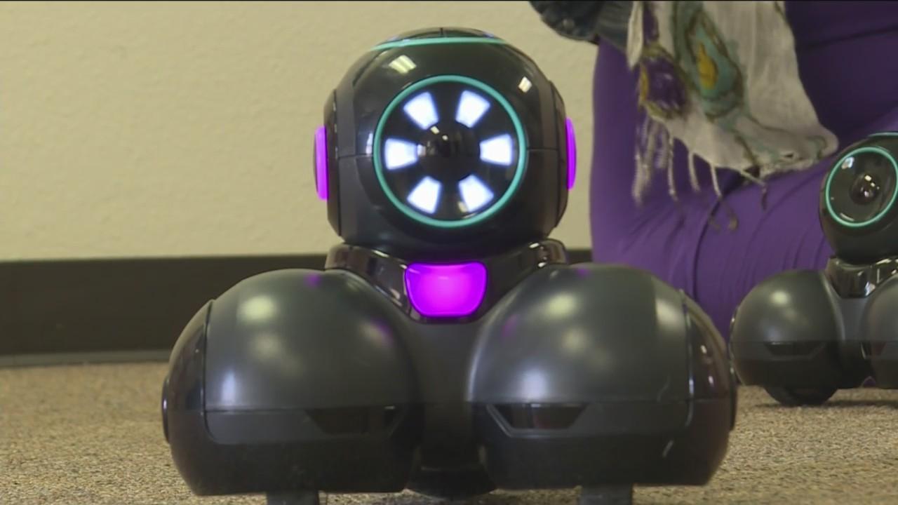 D51 Robotics Training