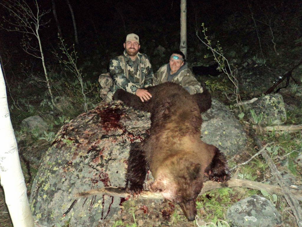 bear hunting-wy